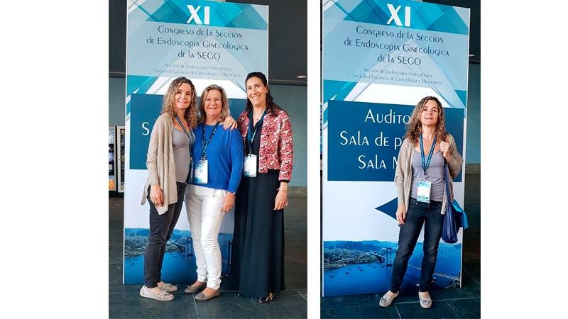 XI Congreso de la sección de Endoscopía Ginecológica de la SEGO